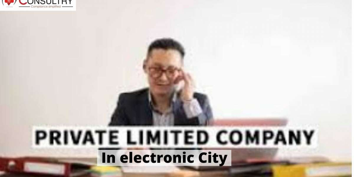 What are the Crucial facts that are of private limited company facing in electronic city?